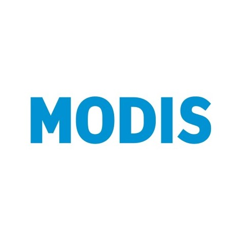 Бренд Modis