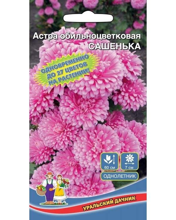 Астра обильноцветковая Сашенька, 0,2 г купить, цены в Москве на goods.ru