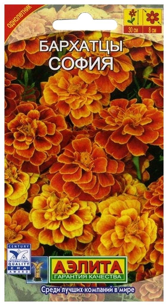 цветы лета семена купить