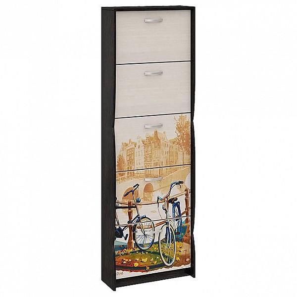 Шкаф для обуви ТриЯ тип 2 Венге цаво/Дуб молочный с цветным рисунком купить, цены в Москве на goods.ru