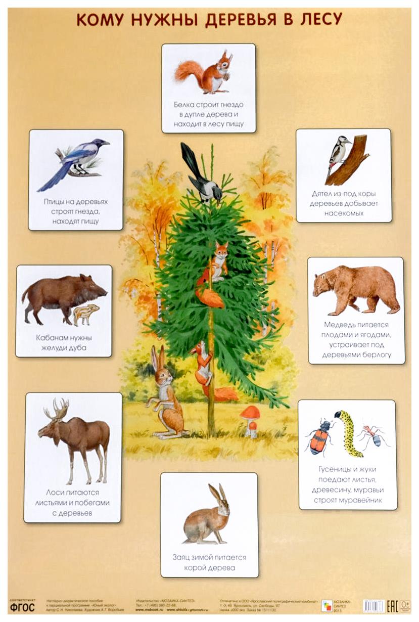 зачем нужны деревья картинки они рано