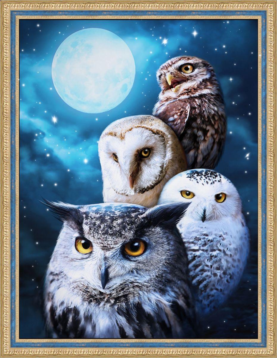 Купить картина стразами «Ночные совы» (АЖ-1738), цены в Москве на goods.ru