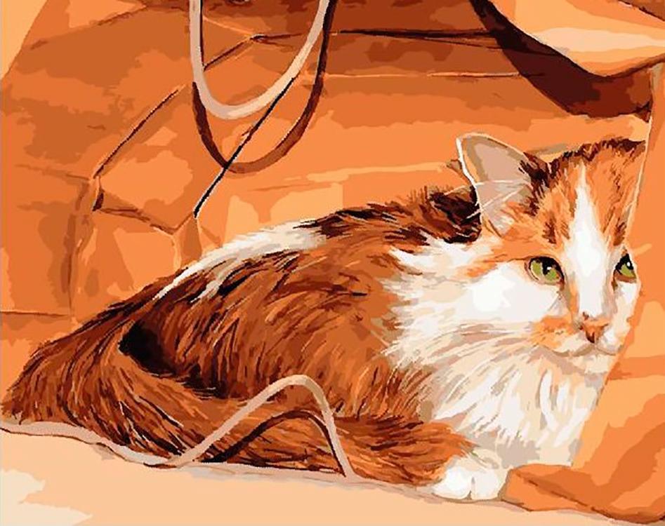 Рыжий кот картинки нарисованные, картинки