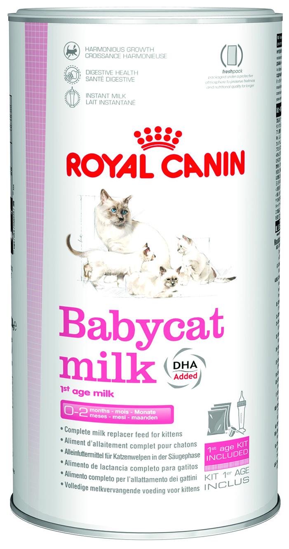 """Заменитель молока для котят Royal Canin """"Babycat Milk"""" с рождения до 2-х месяцев, 300 г - Маркетплейс goods.ru"""