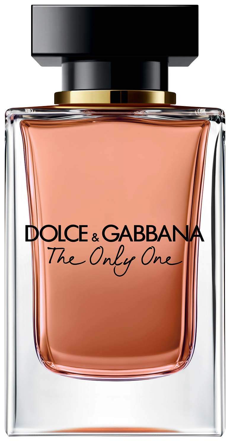 dolce gabbana the only