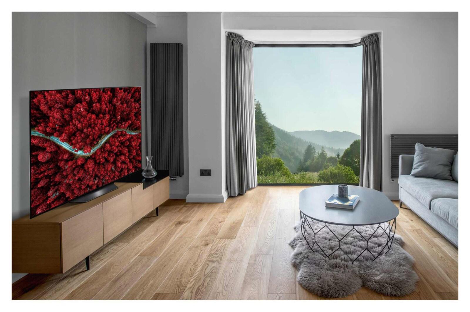 Миниатюра OLED телевизор 4K Ultra HD LG OLED65BXRLA №10