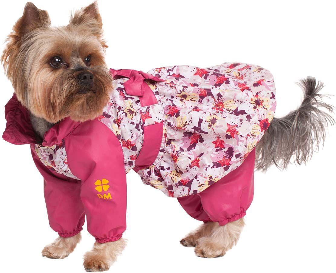бодибилдинг одежда для собак маленьких пород картинки говорить том