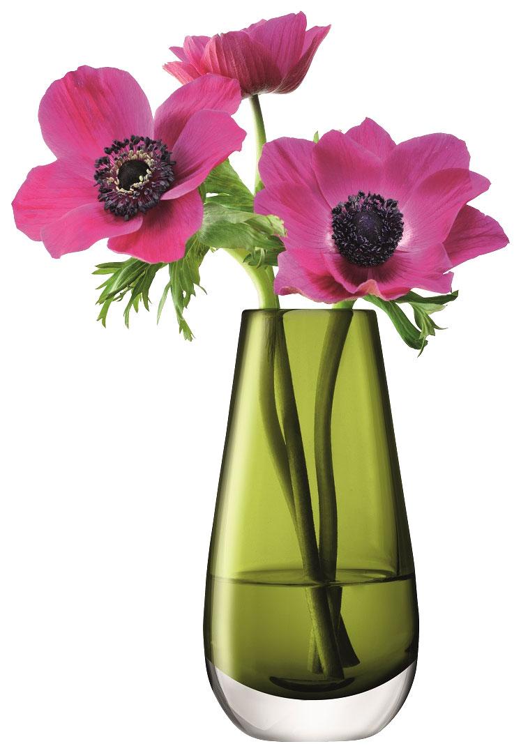 Прикольные, картинки прикольные вазы с цветами