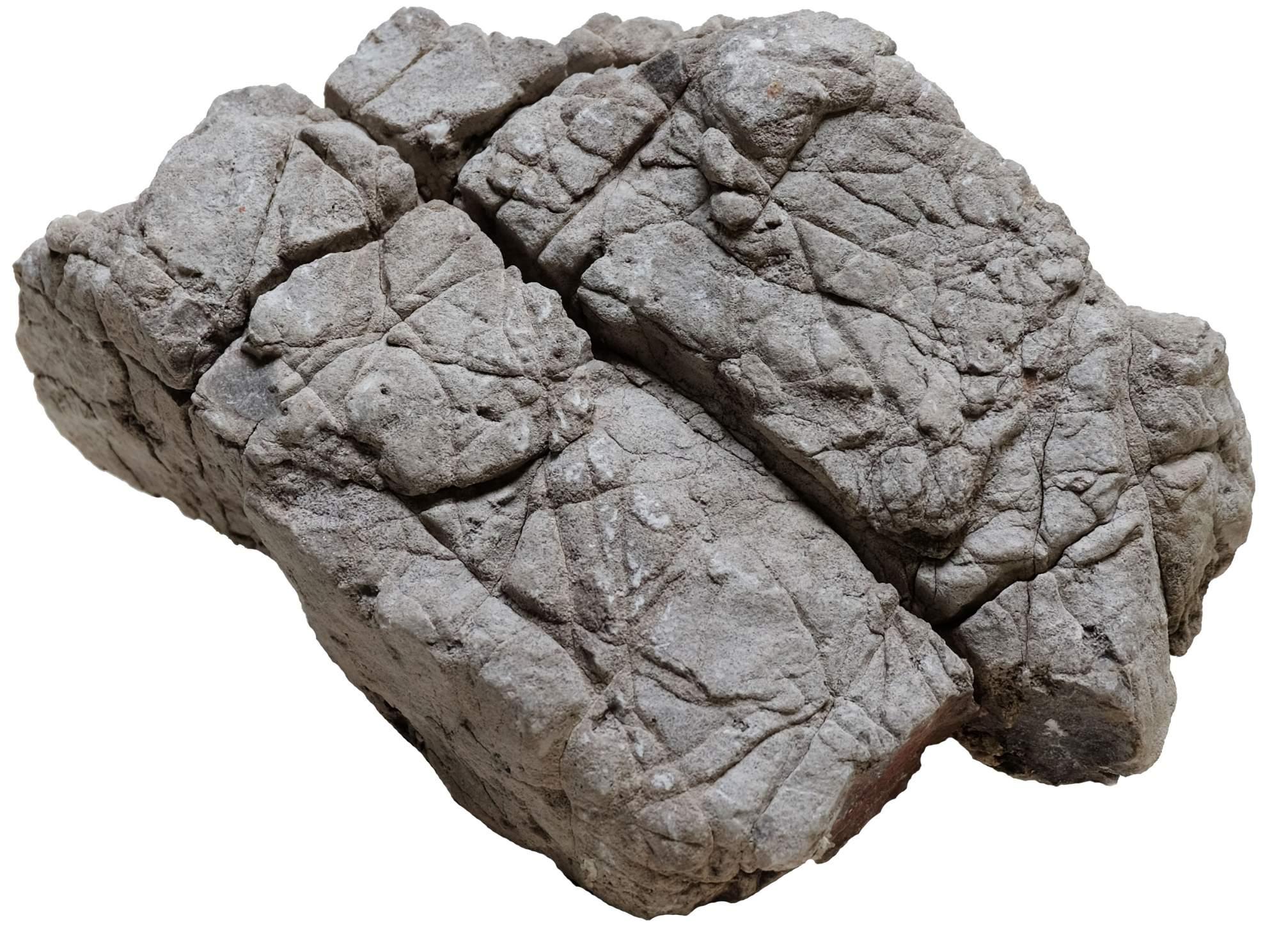 Камень для аквариума Udeco натуральный 1