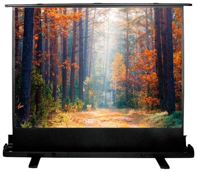 Экран для видеопроектора Cactus FloorExpert CS-PSFLE-180X135