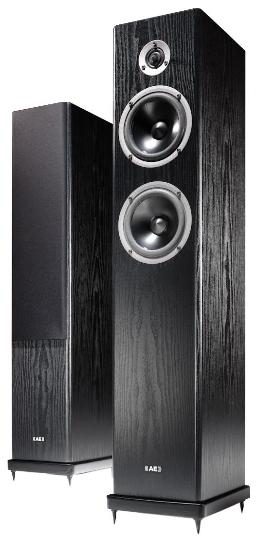 Колонки Acoustic Energy Aegis Neo Three V2 Black Ash