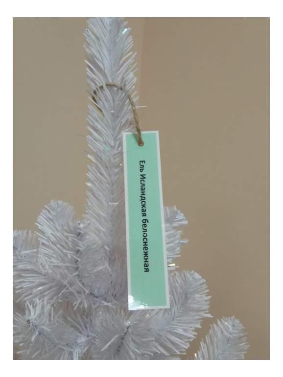 Ель искусственная Triumph Tree исландская в мешочке белоснежная 60 см