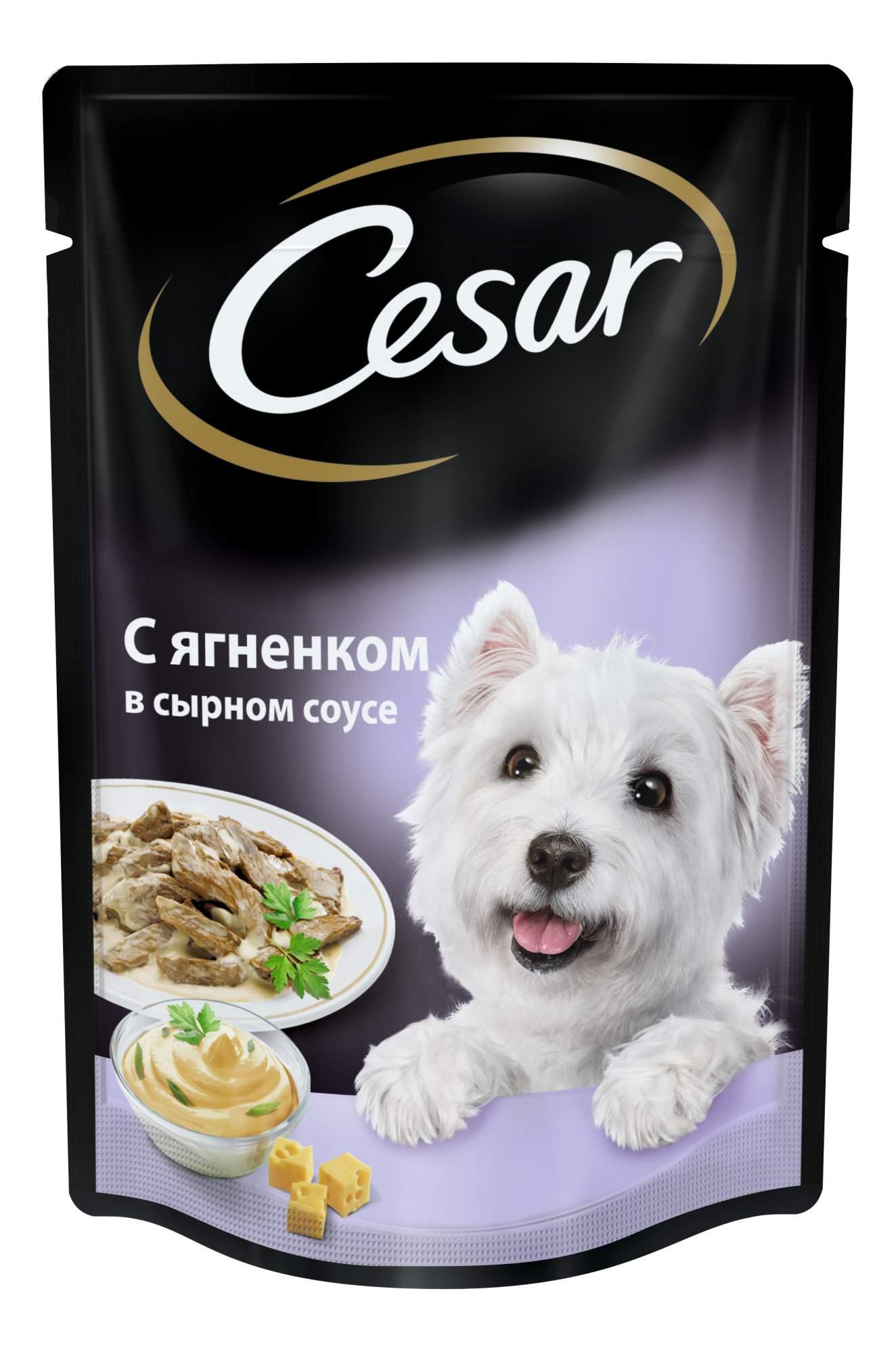 Влажный корм для собак Cesar, ягненок в сырном соусе, 24шт, 100г
