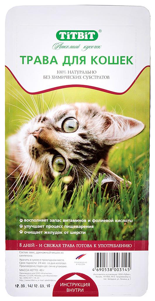 Трава для кошек TiTBiT, овес