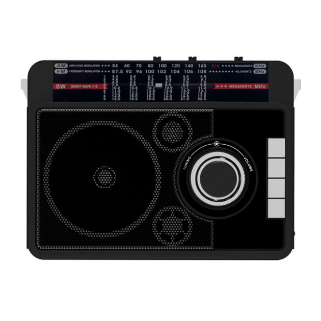 Радио Ritmix RPR-205 Black