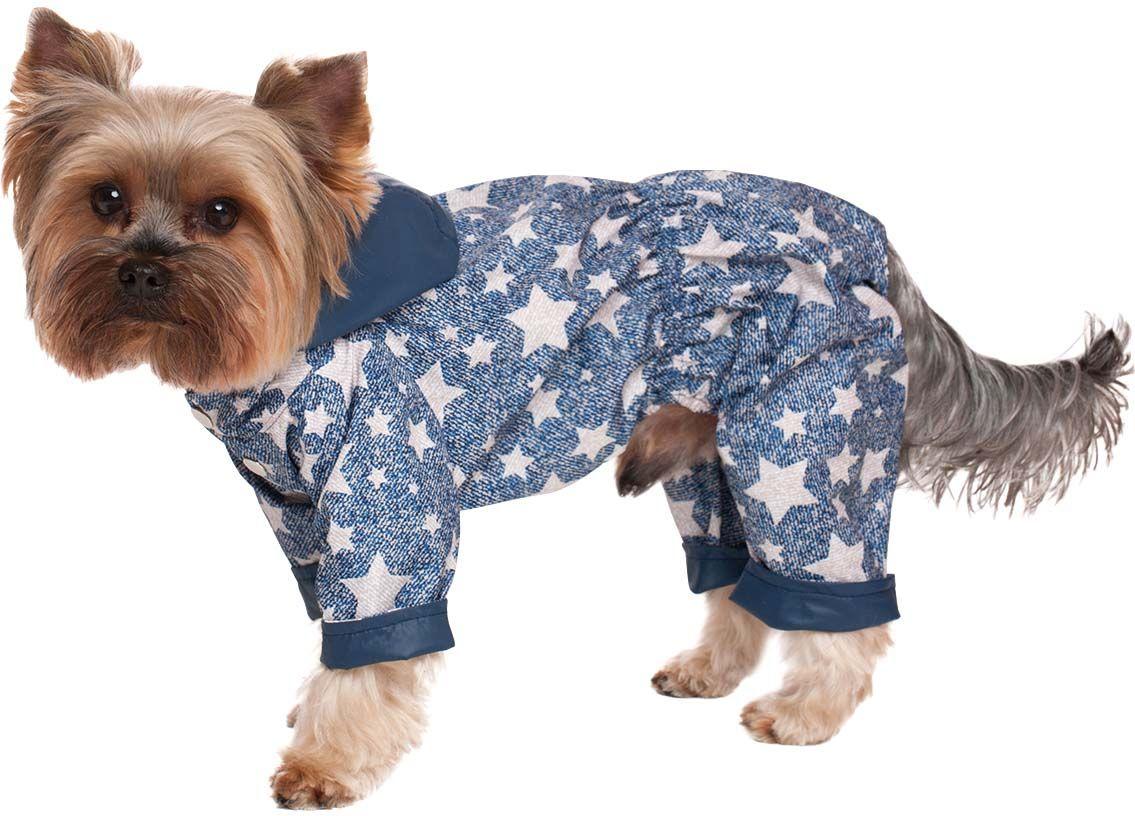 сверху картинки собаки в одежде замочками капоте багажнике