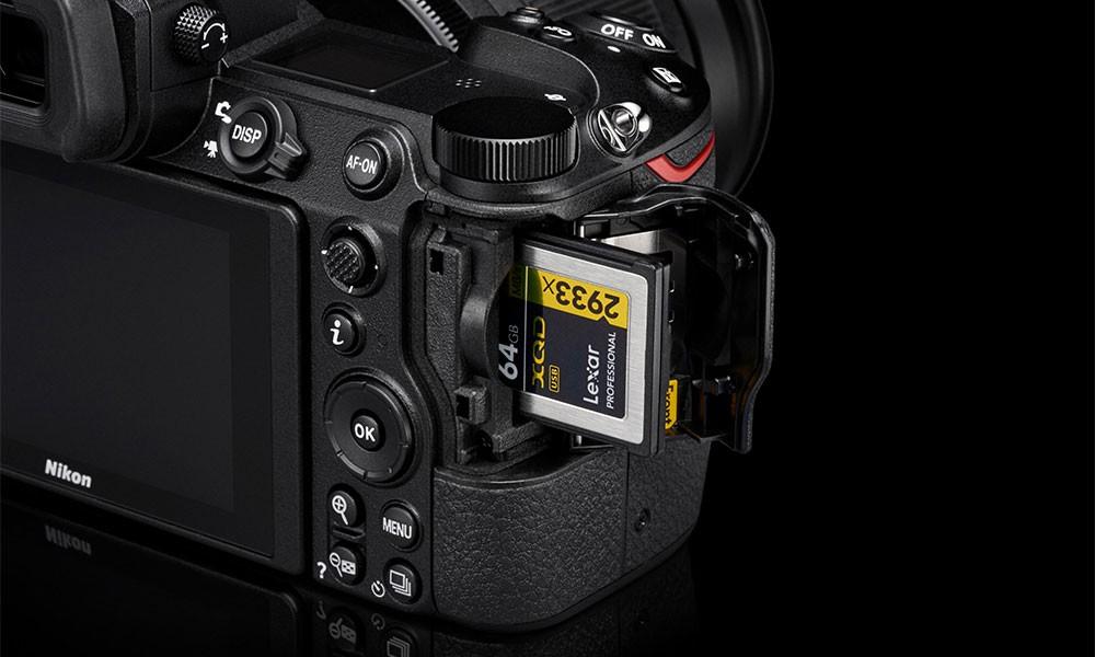 сфотографировали лучшие фотокамеры с полным кадром новые декоративность елей обеспечила