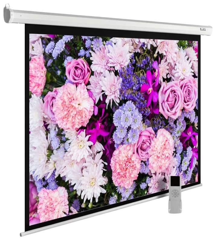 Экран для видеопроектора Cactus MotoExpert CS-PSME-420X315-WT