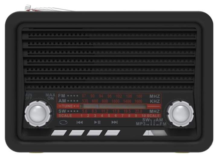 Радиоприемник Ritmix RPR-030 Черный