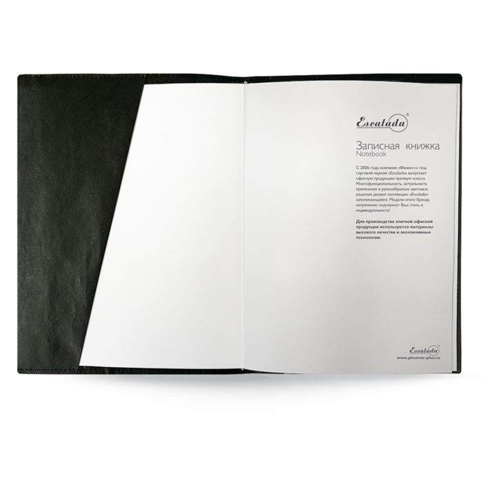 Миниатюра Записная книжка Феникс+ Синтетическая бумага черная 180 х 240 мм50332/15 №4