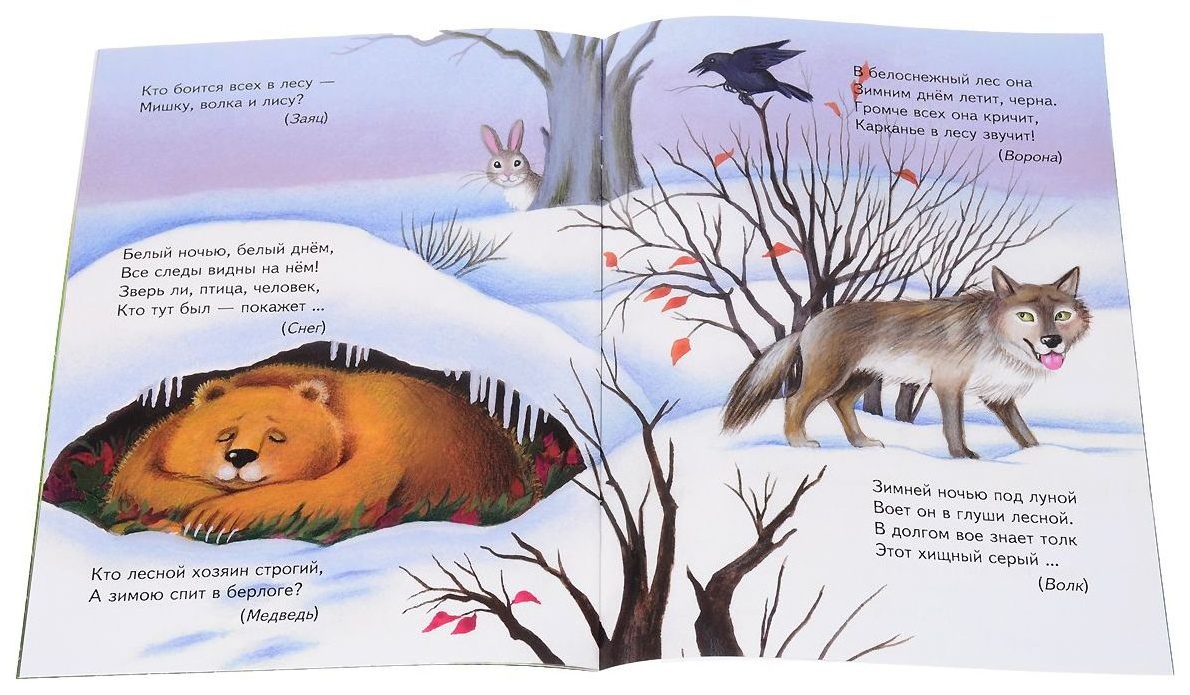воспитанием загадки про животных ответы в картинках сравнению
