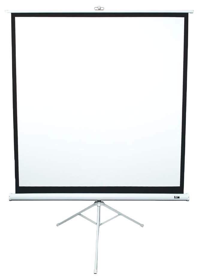 Экран для видеопроектора Elite Screens T99NWS1 Черный белый
