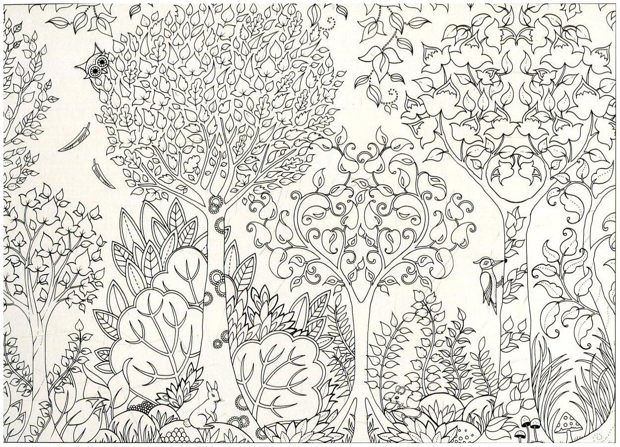Зачарованный лес 20 художественных открыток, казахско языке программа