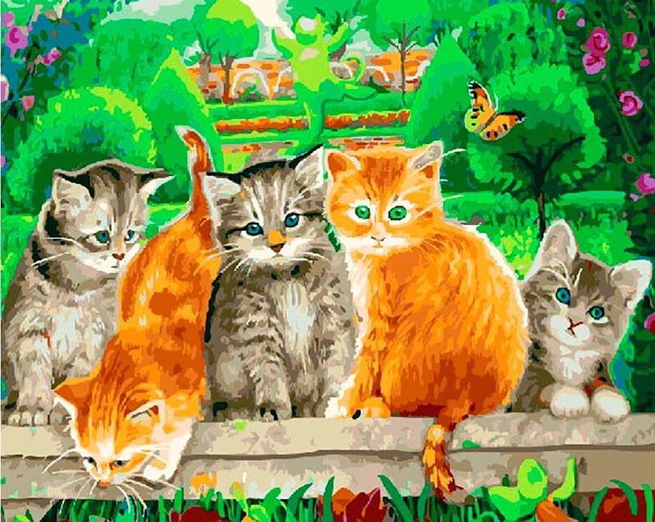 Картинки с кошками маленькими котятами незнанию многие