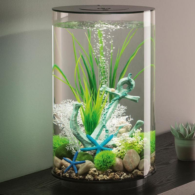 вам фото узких аквариумов диссертации коммуникативные стратегии