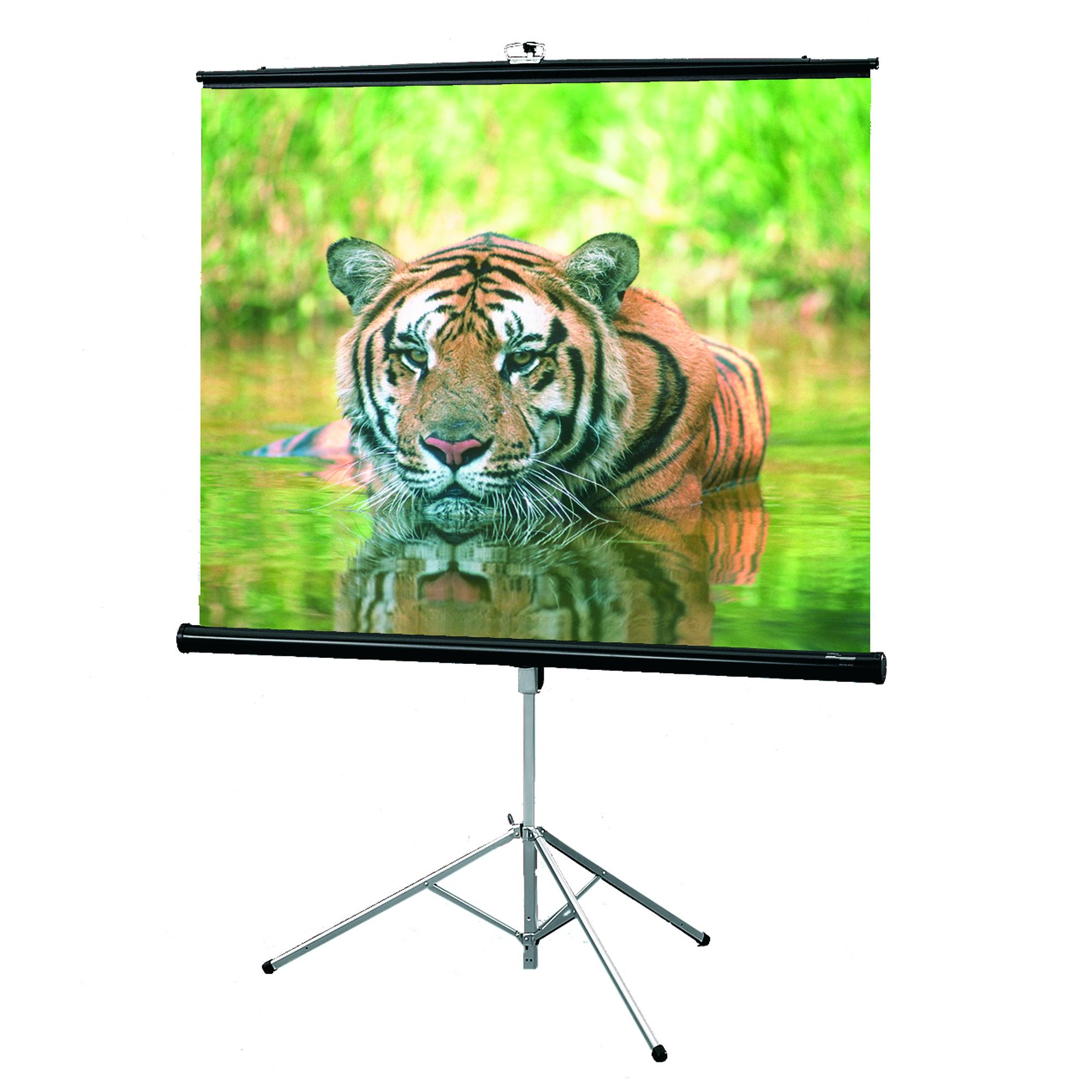 Экран для видеопроектора Draper Consul 216019