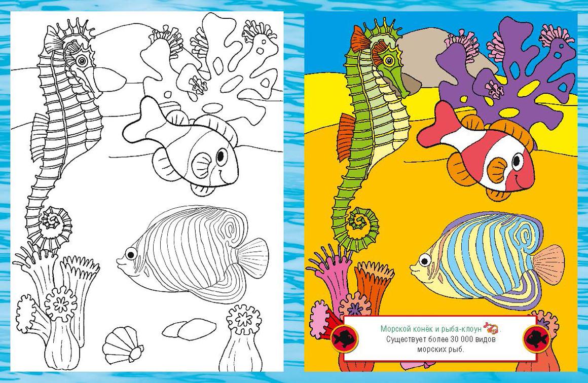 Обитатели морских глубин картинки для дошкольников