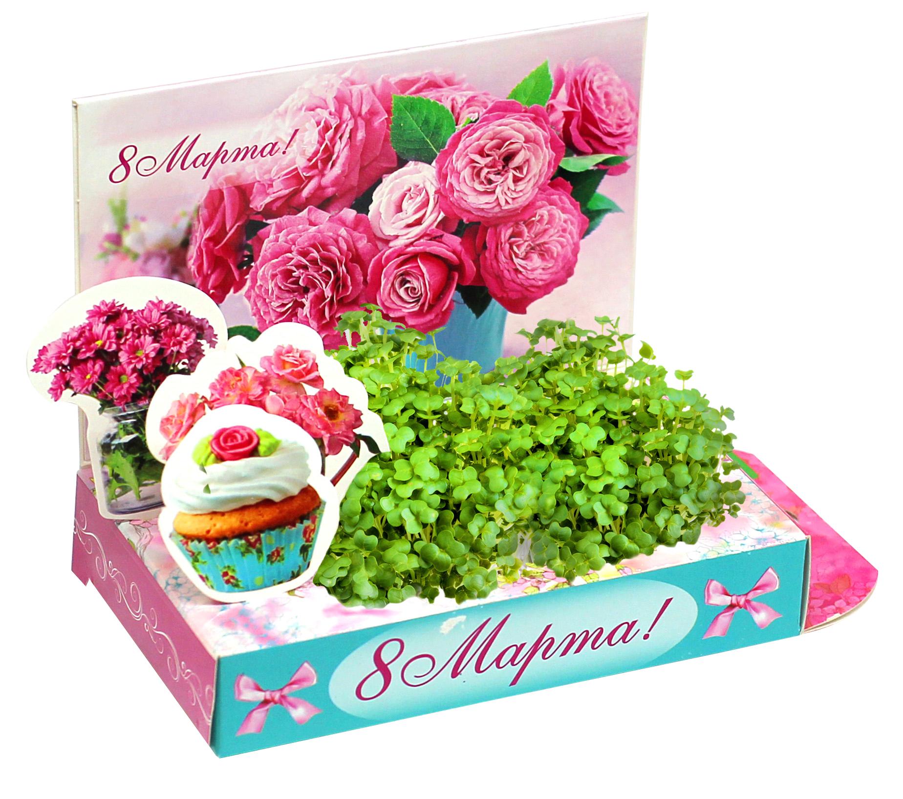 открытки которые процветают живыми цветами набережная