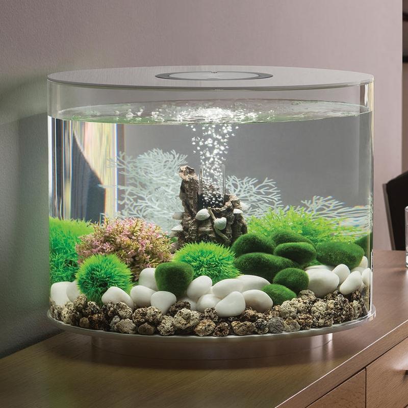 Обустройство аквариума фото