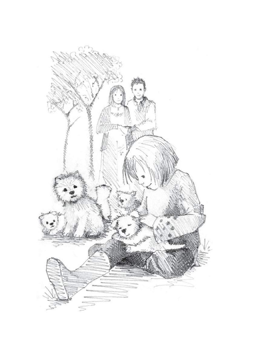 забавные рисунки из книг холли вебб чтобы