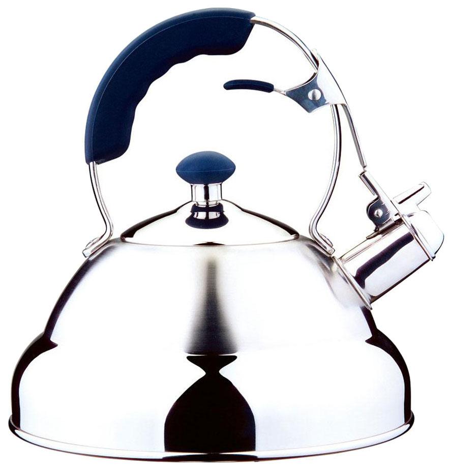 Чайник для плиты Carl Schmidt Sohn Aquatic 5 л цвет Серебристый