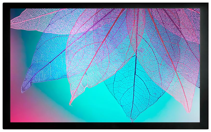 Экран для видеопроектора Cactus FrameExpert CS-PSFRE-220X124