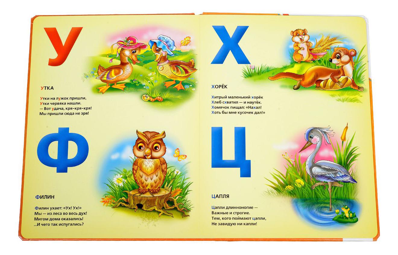 Проект моя азбука с картинками животных цедру апельсина
