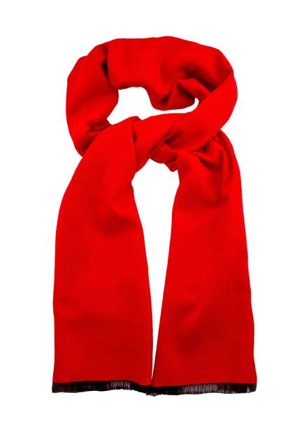 Шарф мужской Roberto Gabbani 600805 красный