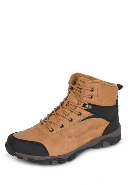 Мужские ботинки T.Taccardi 710019816, коричневый