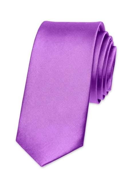 Галстук мужской 2beMan G53 фиолетовый