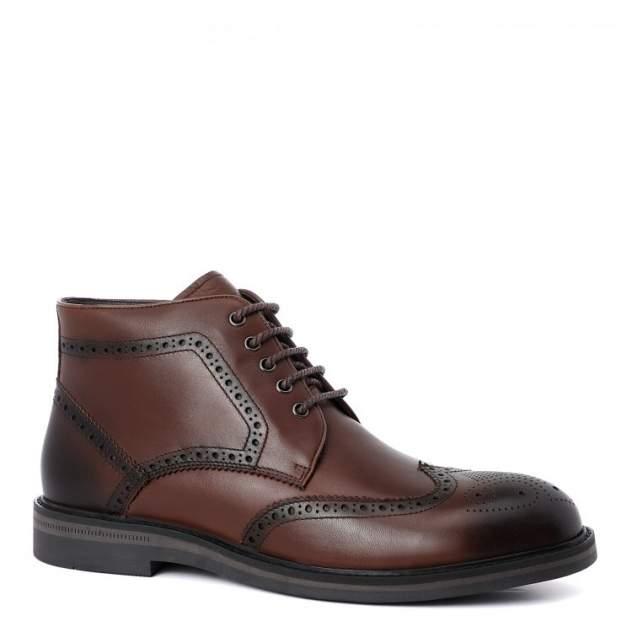 Мужские ботинки Abricot SH833-7-1HT05_К, коричневый