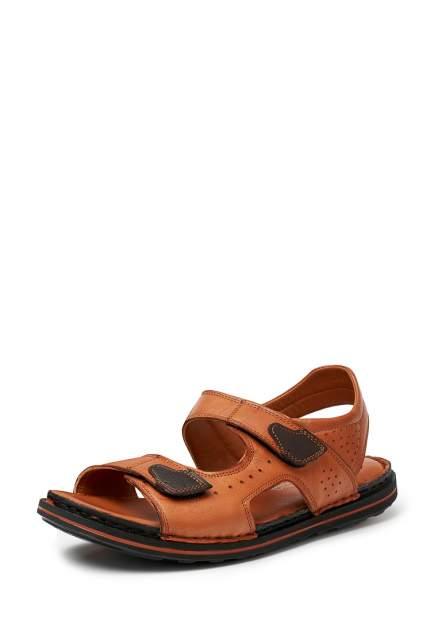 Мужские сандалии Pierre Cardin 110474, коричневый