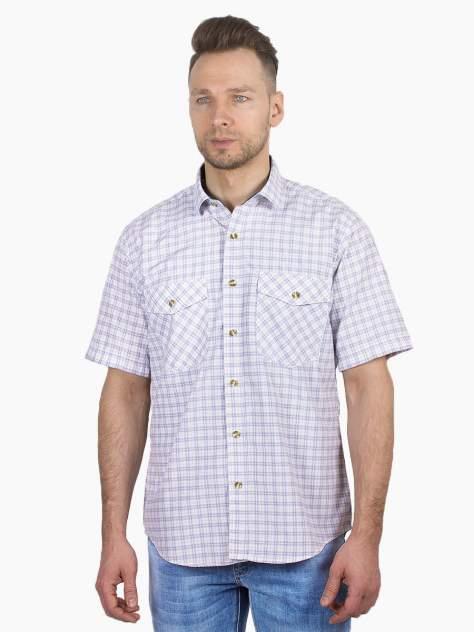 Рубашка мужская Dairos GD81100391 голубая 4XL