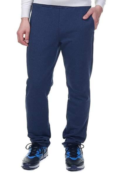 Брюки мужские Rocawear R0119B83 синие M