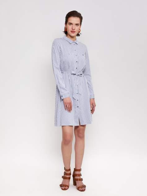 Платье-рубашка женское Zolla z02121829115351S0 голубое XXL