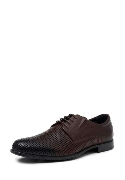 Туфли мужские Alessio Nesca 17-62119, коричневый