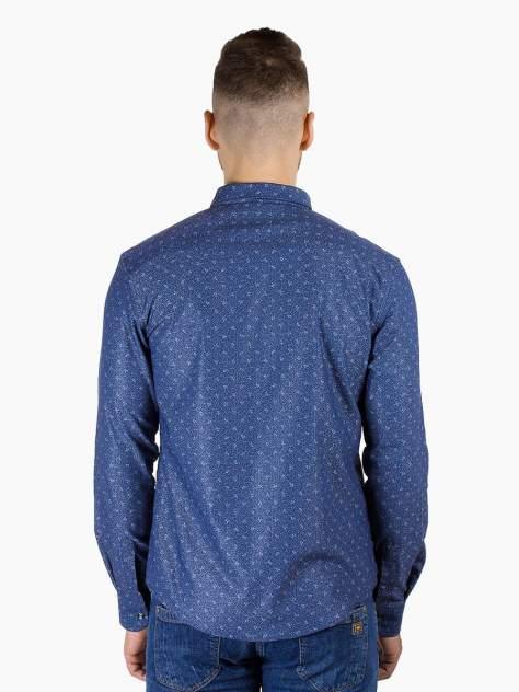 Рубашка мужская Dairos GD81100382 синяя 5XL