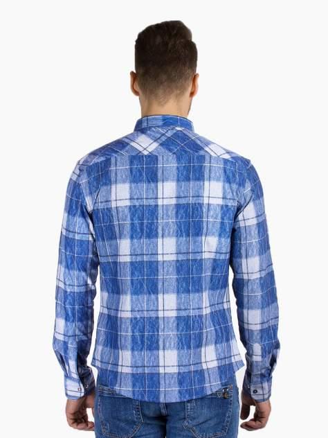 Рубашка мужская Dairos GD81100377 синяя 4XL
