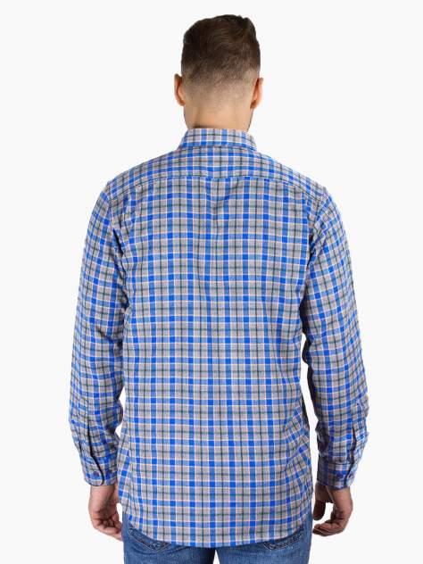 Рубашка мужская Dairos GD81100370 синяя 3XL