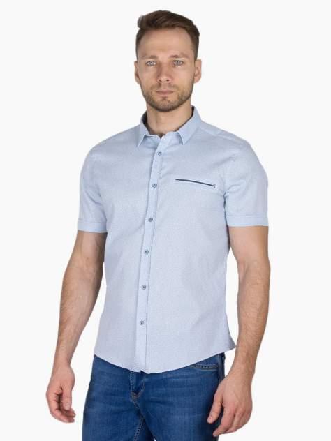 Рубашка мужская Dairos GD81100353 голубая 4XL